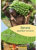 Banana Market Review 2015 - 2016 - Food and Agriculture ...