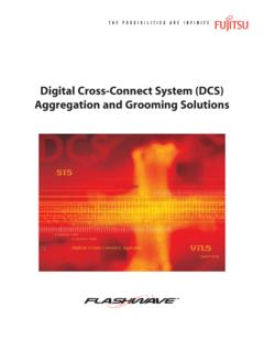 Digital Cross-Connect System (DCS) Aggregation …
