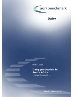 Dairy production in South Africa - impressions