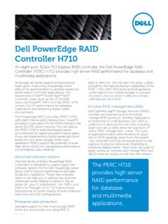 Dell PowerEdge RAID Controller H710