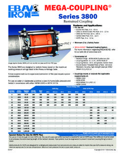 Series 3800 MEGA-COUPLING Restrained Coupling  …