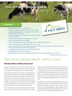 Facts & Figures About Canadian Dairy Cows - Milk