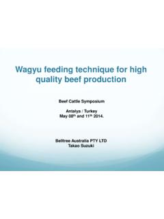 Wagyu feeding technique for high quality beef production