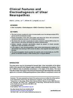 Clinical Features and Electrodiagnosis of Ulnar Neuropathies