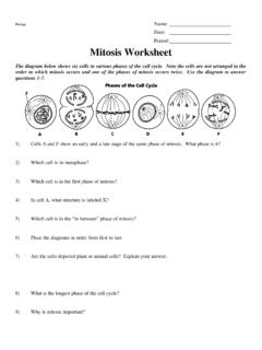 Density Practice Problem Worksheet Density Practice Problem Worksheet Pdf Pdf4pro
