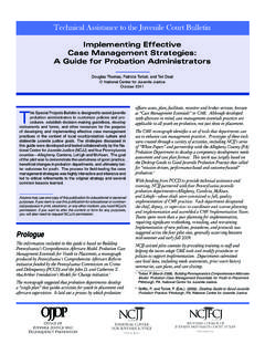 Implementing Effective Case Management Strategies: A …