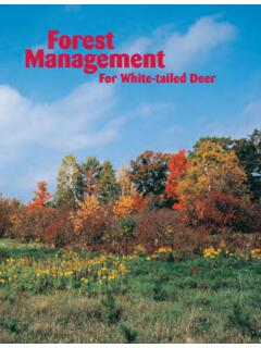 Forest Management for White-tailed Deer