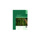 FAO FERTILIZER AND PLANT NUTRITION BULLETIN 16