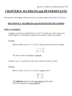 CHAPTER 8: MATRICES and DETERMINANTS