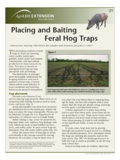 Placing and baiting feral hog traps - Coping with …