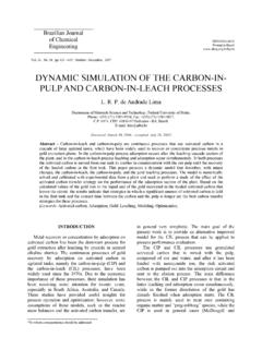 DYNAMIC SIMULATION OF THE CARBON-IN- PULP …