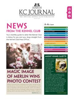 AUGUST 2019 News - thekennelclub.org.uk