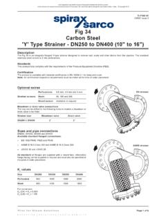 Fig 34 Carbon Steel 'Y' Type Strainer - DN250 to DN400 (10 ...