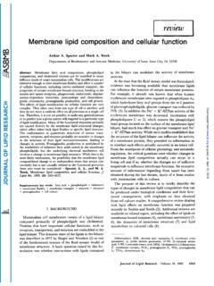 Membrane lipid composition and cellular function