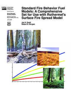 Standard fire behavior fuel models: a comprehensive set ...