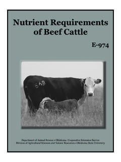 Nutrient Requirements of Beef Cattle - DocuShare