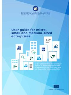 User guide for micro, small and medium-sized enterprises