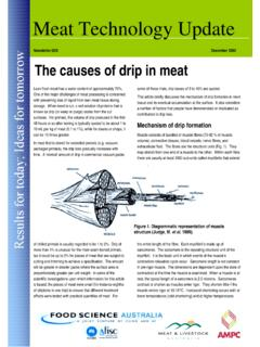 Newsletter 02/6 December 2002 The causes of drip in meat