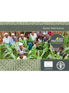 Farmer Field Schools - Food and Agriculture Organization