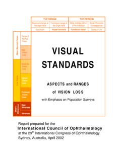 VISUAL STANDARDS - International Council of …