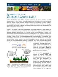A INTRODUCTION TO THE GLOBAL CARBON C