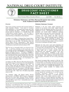 DRUG COURT PRACTITIONER FACT SHEET - NDCI.org