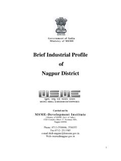 Brief Industrial Profile of Nagpur District - DCMSME
