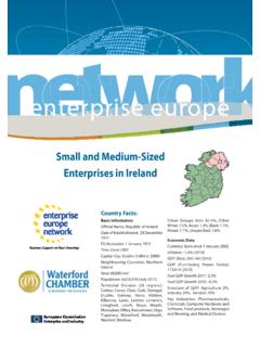 Small and Medium-Sized Enterprises in Ireland