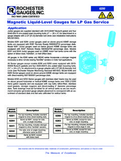 ISO 9001:2008 CERTIFIED Magnetic Liquid-Level …
