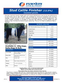 Stud Cattle Finisher 13.5% - Furneys Stock Feeds