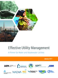 Effective Utility Management A Primer for Water and ...