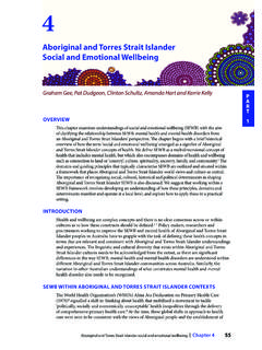 Aboriginal and Torres Strait Islander Social and Emotional ...