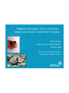 Plastics in the ocean: micro- and macro- plastics as …