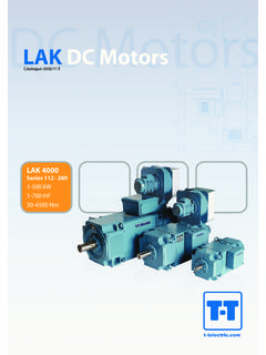 LAK DC Motors - T-T Electric