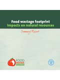 Food wastage footprint: Impacts on natural …
