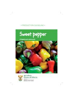 PRODUCTION GUIDELINE • SSweet pepper weet …