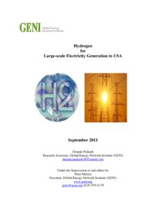 Hydrogen for Large-scale Electricity Generation in USA