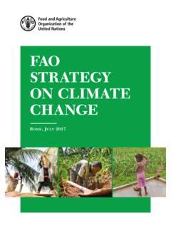 FAO STRATEGY ON CLIMATE CHANGE