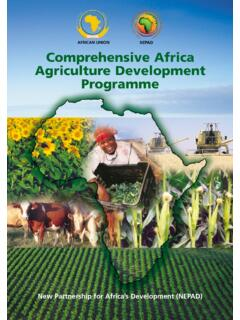 AFRICAN UNION NEPAD Comprehensive Africa Agriculture ...