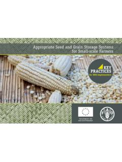 Appropriate Seed and Grain Storage Systems for Small …