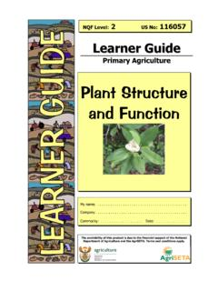 Plant Structure and Function - Home Page- AgriSeta