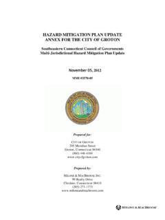 HAZARD MITIGATION PLAN UPDATE ANNEX FOR THE CITY …