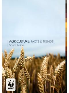 AGRICULTURE: FACTS & TRENDS South Africa