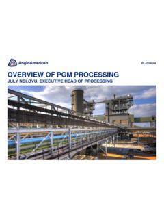 OVERVIEW OF PGM PROCESSING