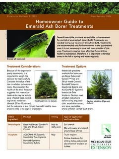 Homeowner Guide to Emerald Ash Borer Treatments
