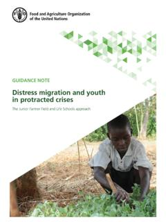 Distress migration and youth in protracted crises