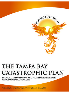 THE TAMPA BAY CATASTROPHIC PLAN - TBRPC