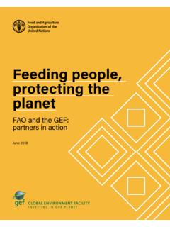 Feeding people, protecting the planet - fao.org