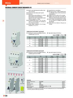 Minia LFE Residual current circuit breakers - OEZ