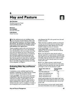 6 Hay and Pasture - Extension & Outreach